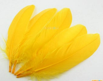 50 Pieces Gold Feather 14-20cm (YM340)