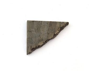 Seymchan Meteorite Slice Designer Gemstone 18.4x22.9x3.7 mm Free Shipping