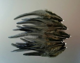 Natural Craft Supplies Short Black Feathers Millinery Supplies Craft Feathers Real Rooster Feathers Qty12