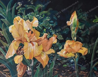 Garden Glories-Floral Painting-All occasion cards-Floral cards-Paper Products