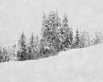 Winter Photography, Ski Lodge Decor, Landscape Picture, Snow Photograph, Black and White Art, Whistler Art Print, Oversized Wall Art