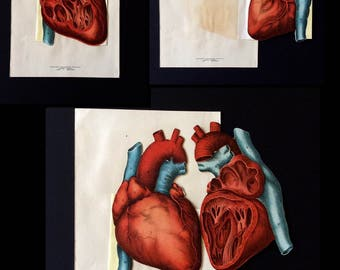 Vintage 1890s German Medical Anatomy Diagram Fold Out Chromolithograph Bookplate HEART Aorta Svankmajer Collage