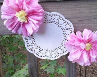 Pink Flowers and White Doilies Banner