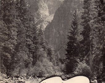 Vintage 1941 Kings Canyon National Park California US Park Service Brochure Description of Park by John Muir, Forests and Fauna, Fishing