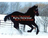 CLEARANCE SALE - Pick Any Six For Five Dollars - Christmas Holiday Note Cards with Draft Horse images