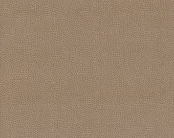 Sprinkles in Tan, Kathy Brown Teacher's Pet for Red Rooster Fabrics, 100% Cotton