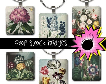 1-Inch Squares Collage Sheet - Assorted Vintage Botanicals - For Pendants, Magnets & Wine Charms - Inchies Flowers SQUARE PDF 1 Inch