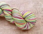 SALE Mistletoe's for Two sport sock yarn - SW Merino/Nylon  (328 yards) sport weight