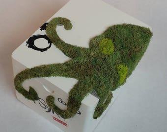 Groomsman Best Man Gift box, Repurposed Cigar Box Moss Art, Tentacle Stash Box, Keepsake Box, Octopus, Cthulhu