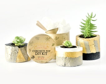DIY Kit Concrete Pot | Planter Craft Box