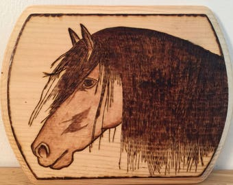 Long Haired Horse