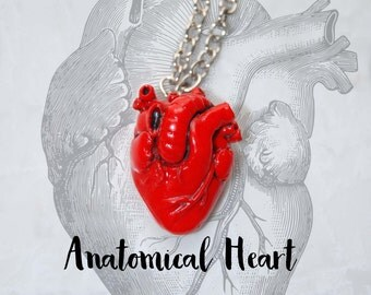 Anatomical Heart Necklace | Heart necklace | Anatomical heart | Anatomical Human Heart Pendant | Anatomical Art | Goth necklace