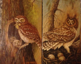 Set of 2 Owls Painted on Wood Panel 1974 Oil Painting