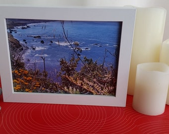 "Northern California Coast * Mendocino Wildflowers * Framed Original Photo * 5"" X 7"" photo * 6"" X 8"" X 1 3/8"" * White Wood Frame"