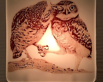 Owl Kiss Night Light Fused Glass