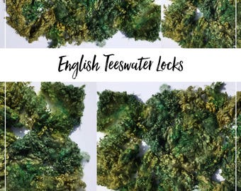 Very special English teeswater lamb locks (1st clip) - wool curls for spinning and felting etc 2oz
