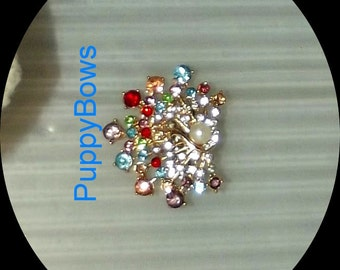 Puppy Bows ~SMALL rainbow peacock dog bow  pet hair clip barrette