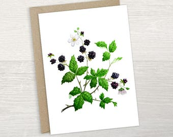 Blank greeting card - blackberry illustration with envelope. For any occassion