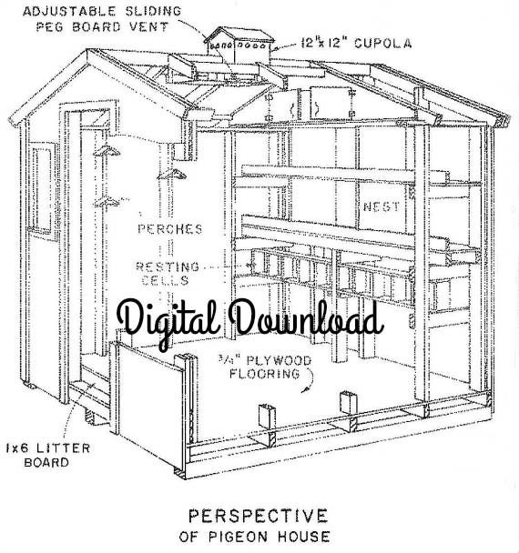 Chicken pigeon coop blueprint includes nest boxes 8x8 for Chicken coop plans free pdf