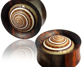 Wood plug Sonnenuhr Auger shell tunnel unisex studs earrings hand-carved (No. HPT-122)