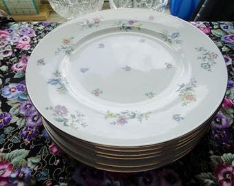 Franconia Fleurettes Fine Dinnerware 5 Dinner Plates Adorned With Colorful Small Flowers Free Shipping