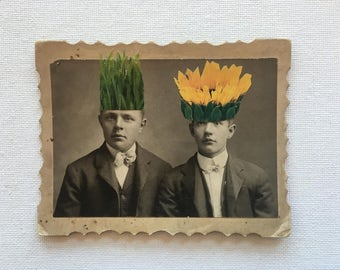 original mixed media, vintage photograph, sunflower, garden