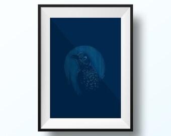 Australian Bowerbird A4 Print