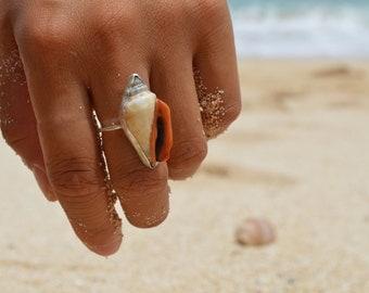 Shell of a women
