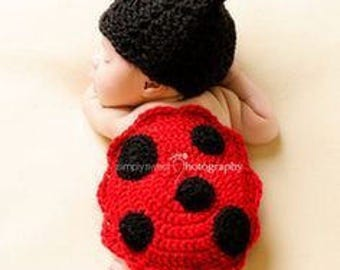 Lady Bug Photo Prop For All the  Lady Bug Lovers 0-3 Months