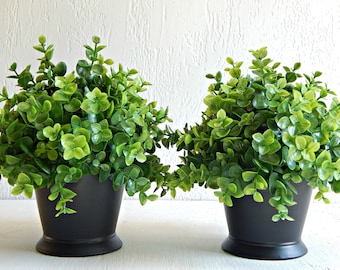 Two Matching Plants, Faux Boxwood, Topiary, Office Plants, Mantle Decor,  Small