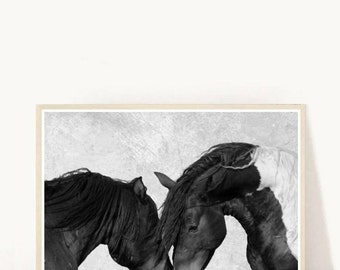 Horse Art, Horse Print, Printable Art, Two Horses, Black And White Horses, Textured,  Horse Photo, Wall Decor, Wall Art, Instant Download