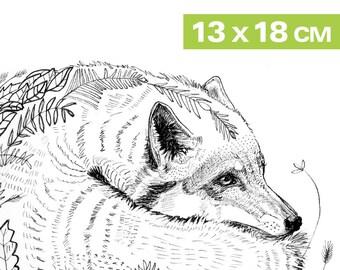 Mini-Print, Hallo Herbst/Hello Autumn, 12,6x17,9cm, pencil drawing, 300 g paper