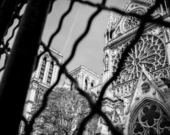 Notre Dame Cathedral Print - Paris Black White Print, Paris Wall Art, Paris Decor -Paris Photography Print
