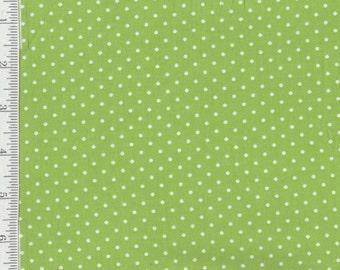 Lakehouse Polka dots - Per Yard- Lakehouse - Grey - No Pam Kitty Here! Green