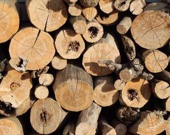 Wood pile - digital download, background picture