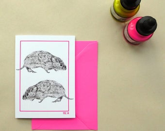 SALE: Vole illustrated greeting card, A6 natural history-inspired card