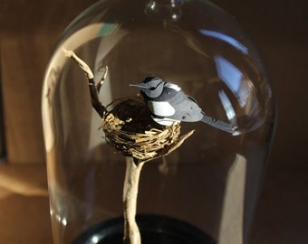 Adorned. Paper-cut Magpie Sculpture Mounted in a Bell Jar. 2016