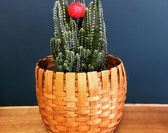 Round Wicker Basket / Plant Holder