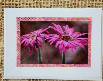 Pink Zinnia note card