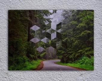 Forest Art Framed Poster