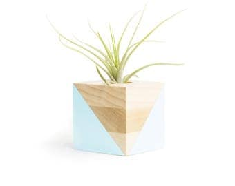 FREE SHIPPING, 5 Colors, Wood Holder, Gift For Her, Airplant, Home Decor, Small Pot, Air Planter, Air Plant, Desk Decor, Wooden Pot, Planter