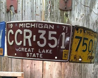 Large Licence Plate with bicycle wheel lamp