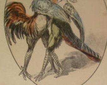 SALE Vintage Fantasy Postcard (People Dressed As Birds)