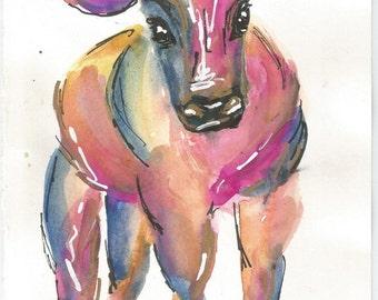The Orange Calf