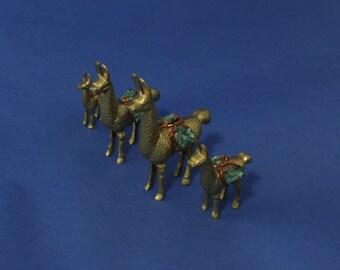 Copper Llamas Family