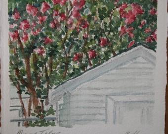 Crepe Myrtle Original Watercolor