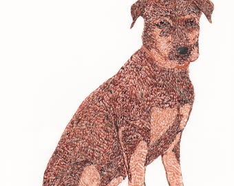 illustration: pet portraiture