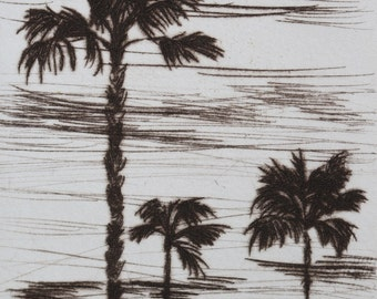 Three Palms - 3.5 x 5 inch drypoint of Palm Trees