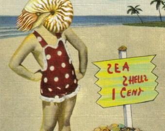 Seaside Art, Seashell Artwork, Beachy Wall Art, Florida Coast, Beach Wall Decor, Coastal Gift, Original Collage Art Postcard