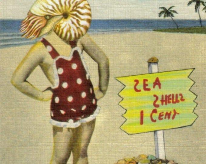 Beach Theme Art Collage, Coastal Florida Seashell Artwork